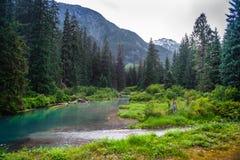 Lagune at Fish Creek in Hyder, Alaska. Royalty Free Stock Photo