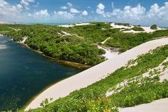 Lagune Genipabu royalty-vrije stock afbeelding