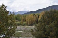 Lagune hetzt Waldung in den Herbstbergen lizenzfreie stockfotos