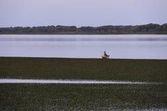 Lagune mit Fischer Stockfotos