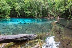 Lagune naturelle bleue verte de piscine Image stock