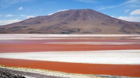 Lagune rouge, Bolivie photographie stock