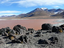 Lagune rouge en Bolivie Photos stock