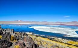Lagune rouge, réservation d'Eduardo Avaroa Andean Fauna National, Bolivie Photographie stock libre de droits