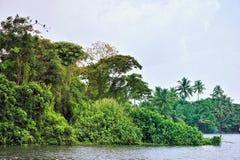 Lagune tropicale Images libres de droits