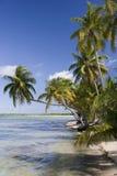 Lagune tropicale - Polynésie française photographie stock libre de droits