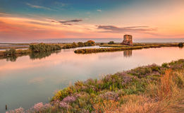 Lagune van Comacchio, Ferrara, Italië Royalty-vrije Stock Foto's