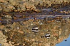 Lagune van zoutwater stock foto's