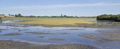 Lagunenvogelschutzgebiet von Süd-Australien Stockfoto