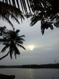 Laguny drzewa granica dwa Fotografia Royalty Free