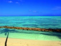 laguny moorea zdjęcia stock