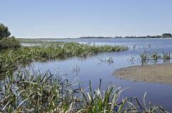 Laguny ptasi sanktuarium Południowy Australia Zdjęcia Royalty Free