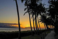 Lahaina Sunset on Maui with Palms Royalty Free Stock Photography