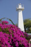Lahania Lighthouse. This lighthouse marks the Lahaina, Maui Marina and location for the cruise launch docking. The beautiful Bouganvillea flowers add a classy Royalty Free Stock Photography