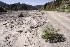 lahar долина pinatubo держателя ландшафта вулканическая Стоковое Изображение