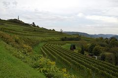 Lahr  vineyards. View past the Schutterlindenberg  vineyards towards the Black Forest, Ortenau region in Baden Germany Royalty Free Stock Photography