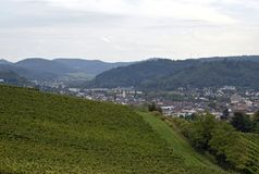 Lahr vineyards. View past the vineyards towards the City of Lahr, Ortenau region in Baden Germany royalty free stock images