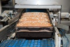 Laibe des Brotes in der Fabrik Lizenzfreie Stockbilder