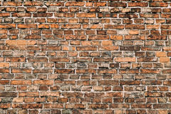 Laid-old wall of bricks Royalty Free Stock Image