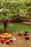 Laid table outdoors Stock Photos