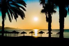 Laidback soluppgång Fotografering för Bildbyråer