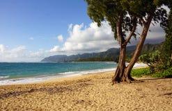 Laie strand, Oahu, Hawaii Arkivfoton
