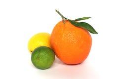 Laim orange de citron Photographie stock