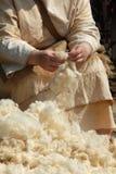 laines Photographie stock libre de droits