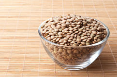 Laird lentils Royalty Free Stock Photography