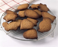 Laissant les biscuits pour refroidir Photos stock