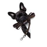 Laisse en cuir de chien Image stock