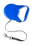 Laisse escamotable bleue pour la première vue de crabot Photos stock