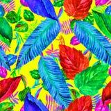 Laisse le modèle coloré Fond de feuillage Illustration d'aquarelle Image libre de droits