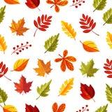 Laisse le modèle sans couture dans la saison d'automne illustration de vecteur