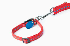 Laisse rouge de chien photo libre de droits