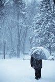 laissez la neige Photos stock