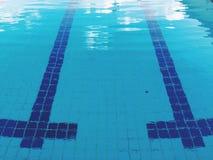 laissez-nous natation dans la piscine Photos libres de droits