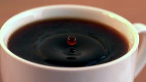 Laissez tomber la chute dans la tasse de café dans le cinemagraph banque de vidéos