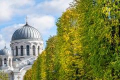 Laisves aleja, Kaunas, Lithuania Royalty Free Stock Photos
