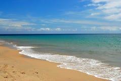 Lait de chaux sur la plage des Caraïbes tropicale Images libres de droits