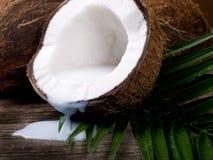 Lait de noix de coco Photos stock