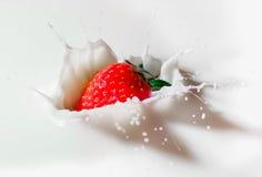 Lait de poule de fraise Photos libres de droits