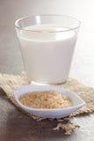 Lait de riz photographie stock libre de droits