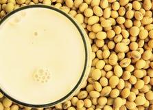 Lait de soja avec du soja photographie stock