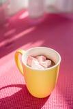 Lait gastronome et mashmellows de chocolat chaud Photos stock