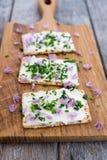 Laiterie et diffusion sans lactose de fromage fondu de vegan faites à partir du cashe photo libre de droits