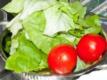 Laitue et deux tomates Photographie stock