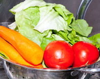 Laitue et tomates avec le raccord en caoutchouc Images stock