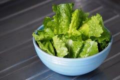 Laitue romaine de cos de salade verte coupée en tranches photo libre de droits