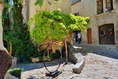 Laitue romaine de La de Vaison, Provence Photographie stock
